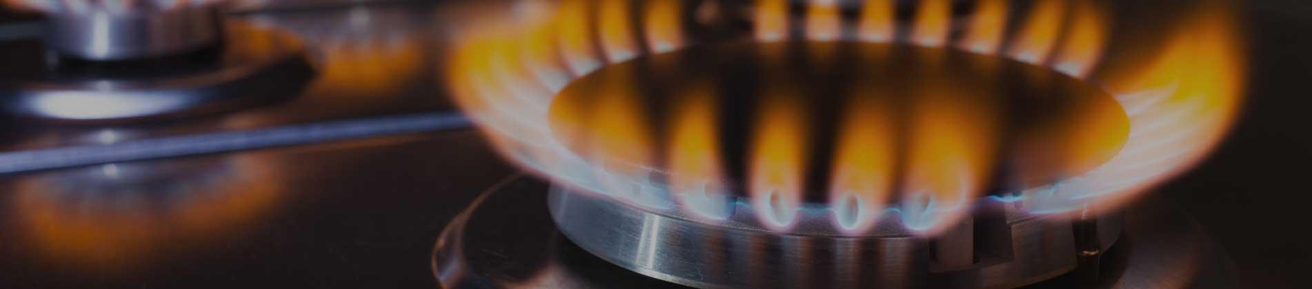 Gas Repairs Auckland